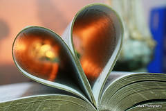 bible heart photo