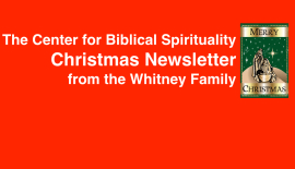 Christmas Newsletter 2014 Featured Image.001