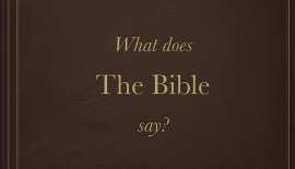What does the Bible say?.001.jpg.001
