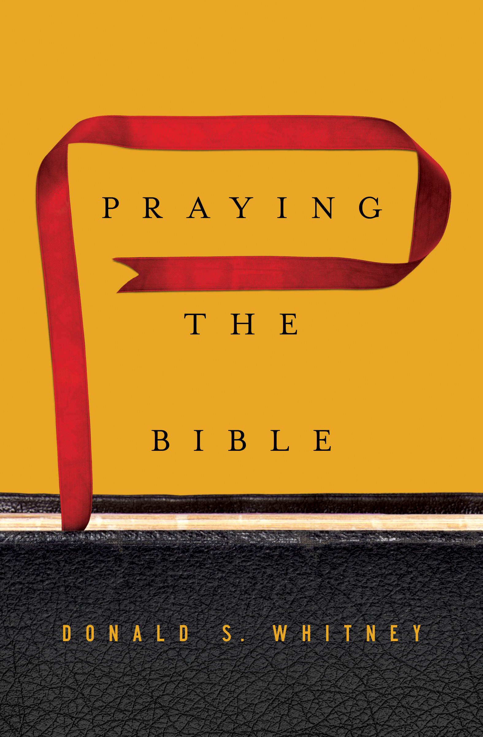 Cover--Praying the Bible_FINAL